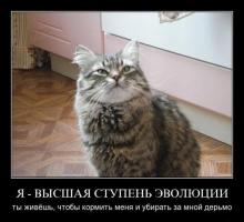 Прикрепленное изображение: untitlekd.png