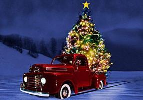 Прикрепленное изображение: christmas-tree-in-car_sm.jpg