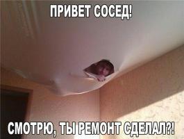 Прикрепленное изображение: image (29).jpg