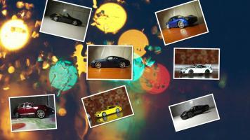 Прикрепленное изображение: collage_photocat.jpg
