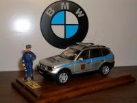 Прикрепленное изображение: BMW_X3_DPS.JPG