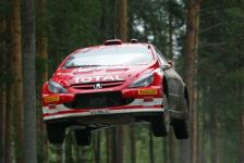 Прикрепленное изображение: Peugeot_307_WRC_04.jpg