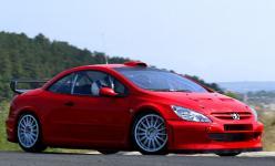 Прикрепленное изображение: Peugeot_307_WRC_01.jpg