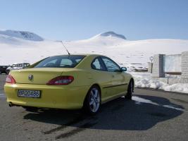 Прикрепленное изображение: Peugeot_406_coupe_7.jpg