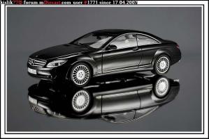 Прикрепленное изображение: AutoArt_Mercedes_Benz_CL_Class_W216.JPG