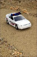 Прикрепленное изображение: 1996_Ford_Mustang_Georgetown_Police_Car___Road_Champs___RCI63104___1_small.jpg