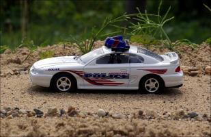 Прикрепленное изображение: 1996_Ford_Mustang_Georgetown_Police_Car___Road_Champs___RCI63104___3_small.jpg