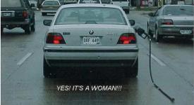 Прикрепленное изображение: Woman.jpg