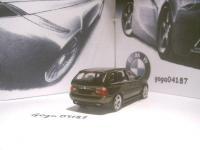 Прикрепленное изображение: BMW_X5_E53_____.JPG