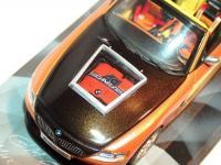 Прикрепленное изображение: BMW_AC_11S_.jpg