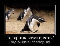 Прикрепленное изображение: 2009_12_20_180329.jpg