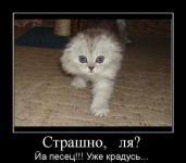 Прикрепленное изображение: demotiw5.jpg