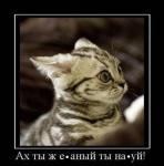 Прикрепленное изображение: x_5f3ea3cb.jpg