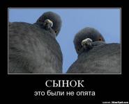 Прикрепленное изображение: x_f84bc416.jpg
