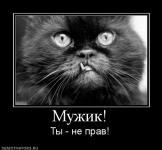Прикрепленное изображение: 430720_muzhik.jpg