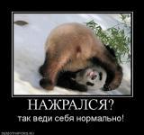 Прикрепленное изображение: 432068_nazhralsya.jpg
