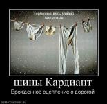 Прикрепленное изображение: 514265_shinyi_kardiant.jpg