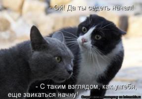 Прикрепленное изображение: f_4302_1_307725177_7.jpg