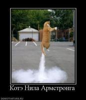 Прикрепленное изображение: 529190_kote_nila_armstronga.jpg