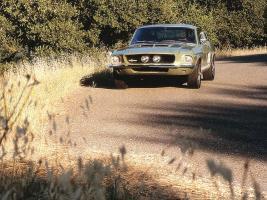 Прикрепленное изображение: Ford_Shelby_Mustang_GT350_1967.jpg