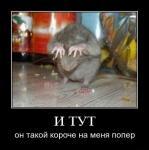 Прикрепленное изображение: 008.jpg