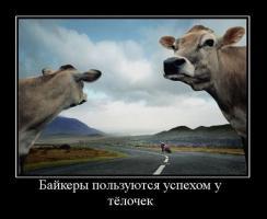 Прикрепленное изображение: demotivator_009.jpg