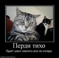 Прикрепленное изображение: e1cfe6946e91.jpg