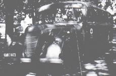 Прикрепленное изображение: 1939forV8_51omnibus.jpg