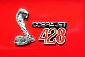 Прикрепленное изображение: COBRA_JET.jpg
