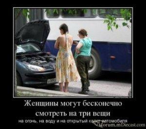 15258564.thumb.jpg.c384aed648d37e979d509bef07838e99.jpg